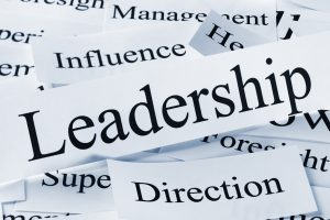 A conceptual look at leadership and associated concepts.